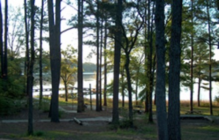 Campgrounds In Longview Texas Camp Native