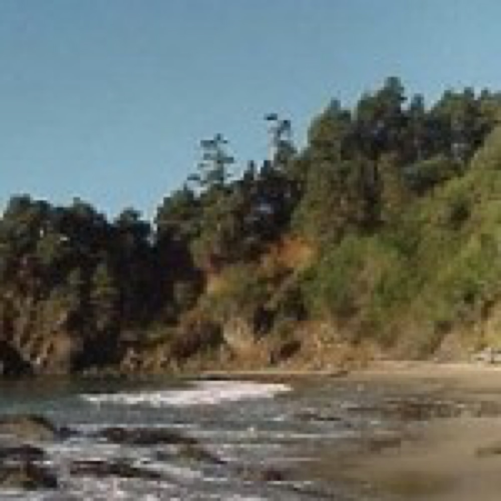 Doran Beach Campgrounds Bodega Bay Ca You