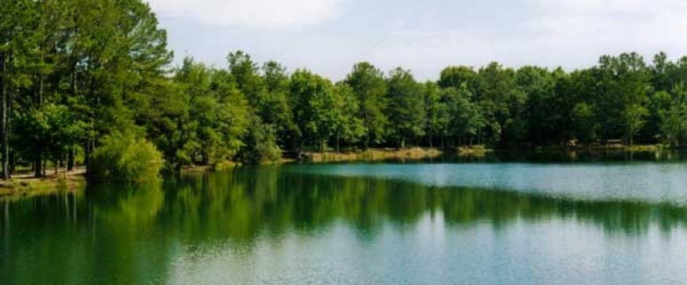 Lake Harmony Rv Park Propane Townsend Ga Campgrounds