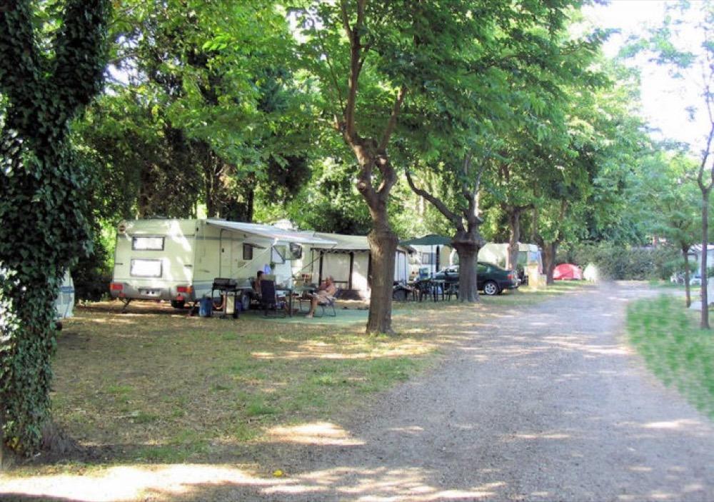 Grand Bois Campsite - Bourg, LA - Campgrounds