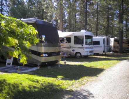 Rainbow Beach Resort Inchelium Wa Campgrounds