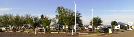 Oasis RV Resort - Amarillo, TX - Campgrounds