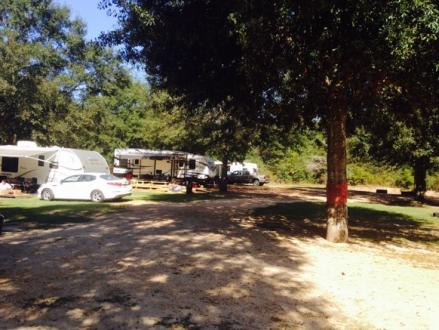 Pickensville Campground Pickensville Al Campgrounds