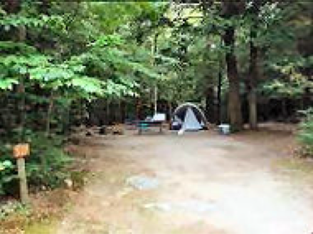 Paugus Bay Campground Laconia Nh Campgrounds