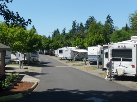 Campgrounds In Canby Oregon Camp Native