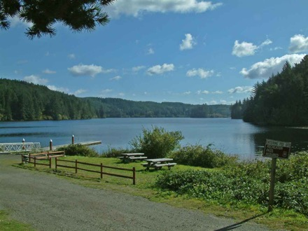 Campgrounds In Loon Lake Washington Camp Native