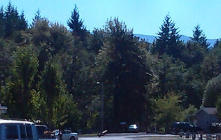 Campgrounds In Mcminnville Oregon Camp Native