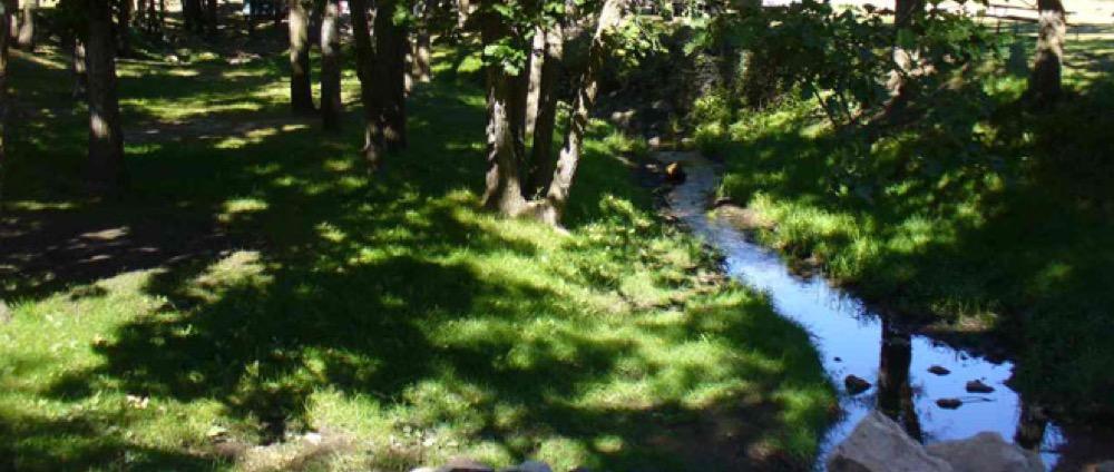 Spokane Creek Cabins Amp Campground Keystone Sd Campgrounds